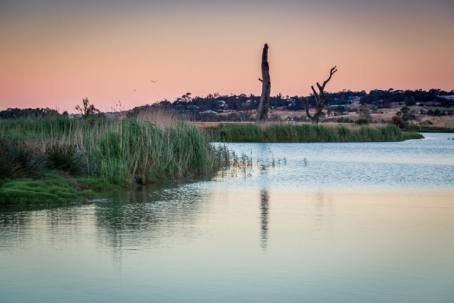 Murray Bridge Wetlands Sunset